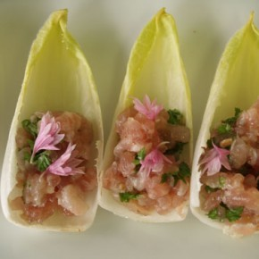 Red Tuna Barquerolle  (Chicon and tuna tartar)